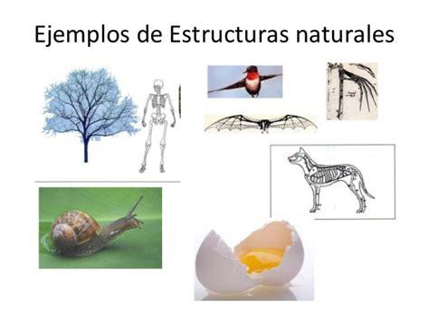 imagenes de estructuras naturales estructuras u d estructuras eso powerpoint