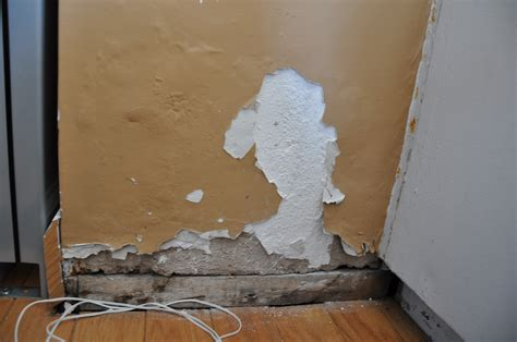 painting on wall repair repairing bubbling blown plaster on an interior