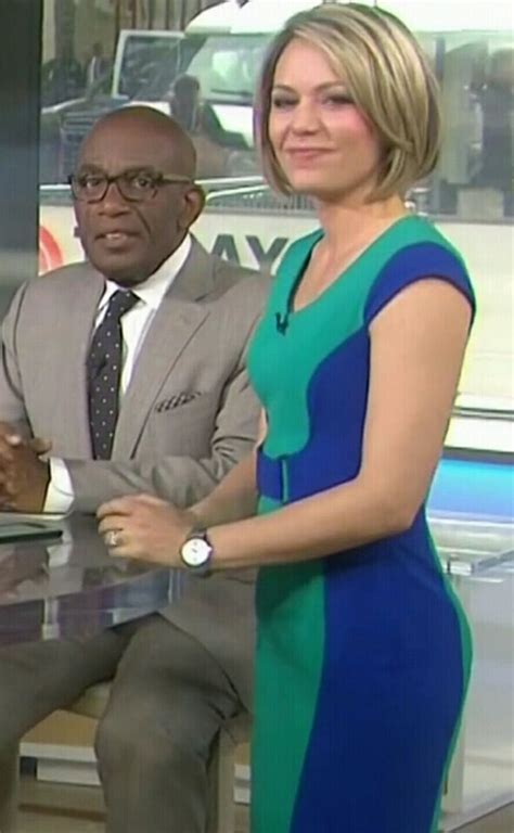msnbc weather delln dryer best 25 dillon dryer ideas on pinterest get out grease