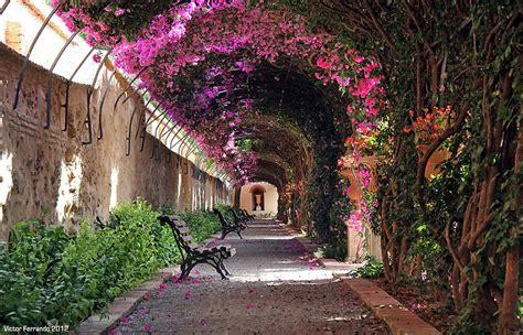 jardines en valencia 10 sitios rom 225 nticos para ir con tu novia en valencia
