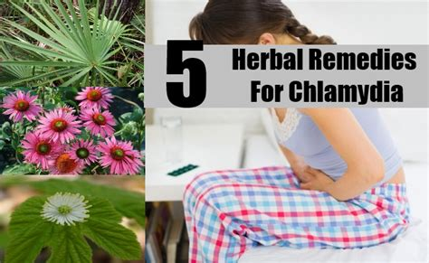 chlamydia herbal remedies treatments cure diy