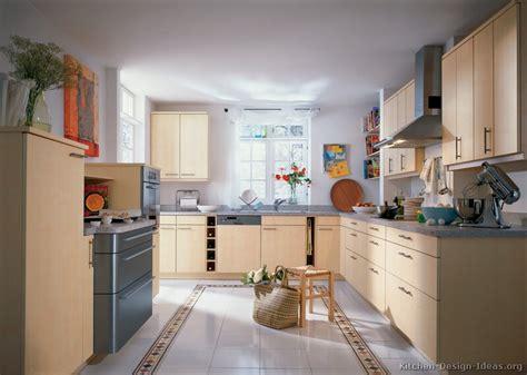 european kitchen design ideas european kitchen cabinets pictures and design ideas