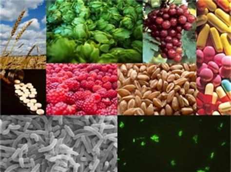 alimenti simbiotici gli alimenti funzionali prebiotici betaglucani probiotici