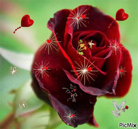 imagenes en movimiento de rosas y corazones imagenes de rosas con movimiento