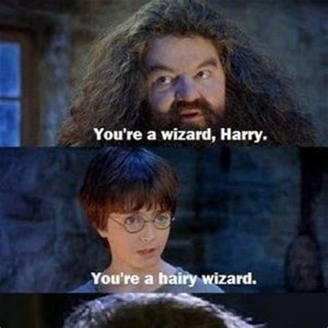 You Re A Wizard Harry Meme - meme center frizbee profile
