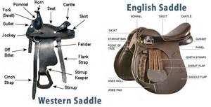 Comfortable Western Saddles Western Vs English Riding