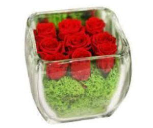 consegna fiori a domicilio low cost 30 best valentines days flowers images on