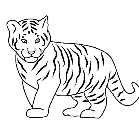 coloring page tigers tiger coloring pages for kids printable