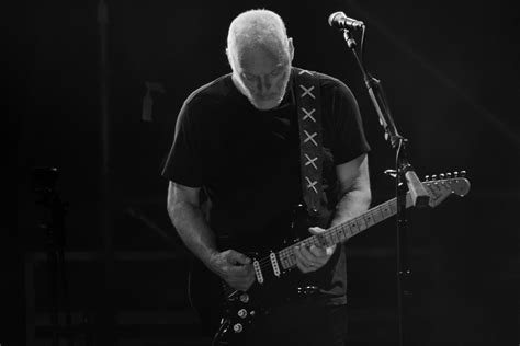 comfortably numb david bowie david gilmour david bowie quot comfortably numb quot the daily