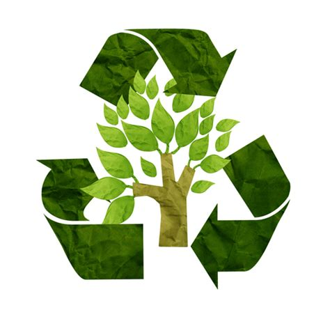 Why Go Green Essay by Going Green Powered By Oi
