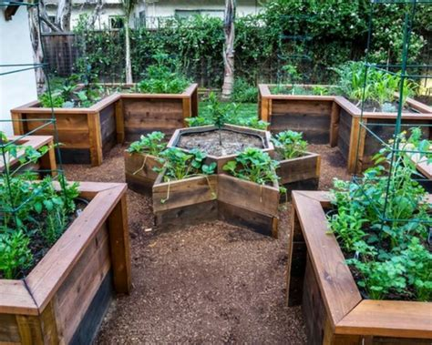 How To Grow Awesome Vegetables In Raised Garden Beds Awesome Vegetable Gardens