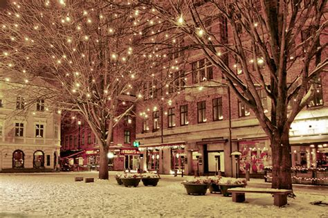 christmas city lights pink pretty snow winter image