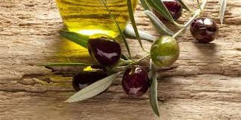 Minyak Zaitun Biasa 5 manfaat luar biasa buah zaitun paling seru