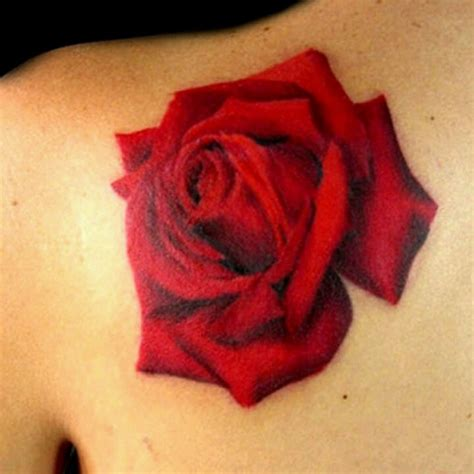 every rose has its thorn tattoo 17 best images about tattoos on sleeve