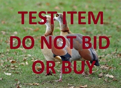 bid and buy do not bid or buy meets do not list or sell greg org