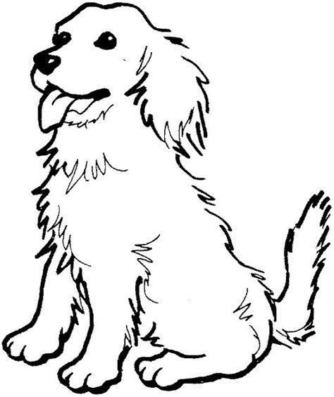 coloring pages of golden retriever puppies coloring page of a golden retriever photo happy dog heaven