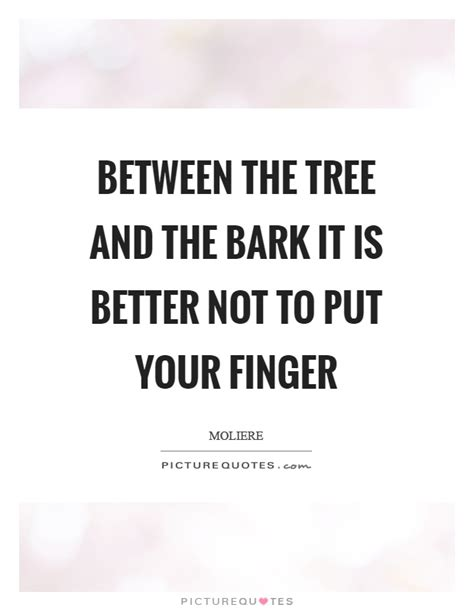 the tree could not put bark quotes bark sayings bark picture quotes