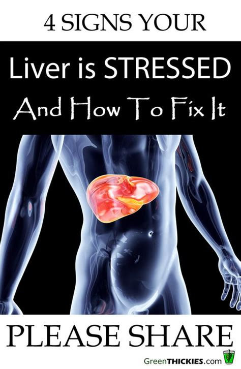 Signs And Symptoms Your Is Detoxing by 4 Signs Your Liver Is Stressed How To Fix It Cancer