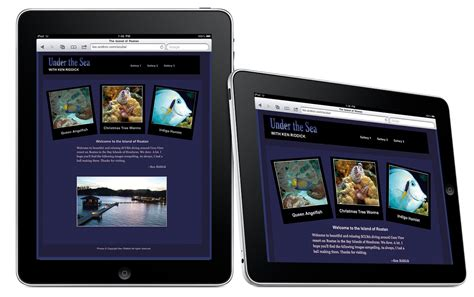 iphone css layout with landscape portrait modes css media query target iphone ipad