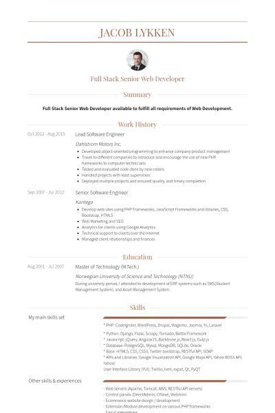 Software Skills Resume by Lead Software Engineer Resume Sles Visualcv Resume