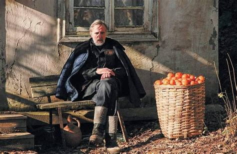 mandarin film estonia mandarinas cr 237 tica de la pel 237 cula