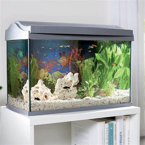 Aquarium   Maxi Zoo