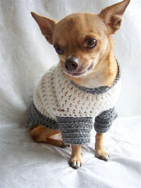 chihuahua sweater knitting pattern chihuahua sweater crochet pattern gray cardigan sweater