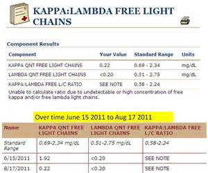 jm s adventure with myeloma kappa lambda free