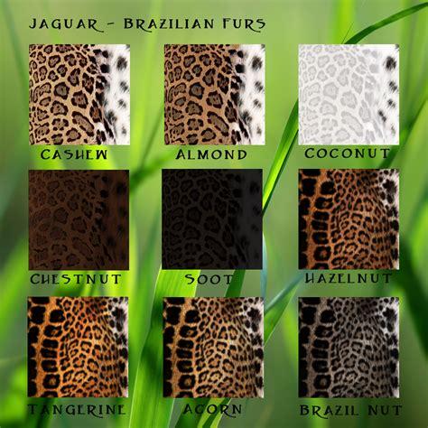 cat pattern types big cat fur types wildkajaerablog