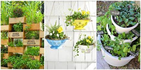 gardening tips   garden  landscape