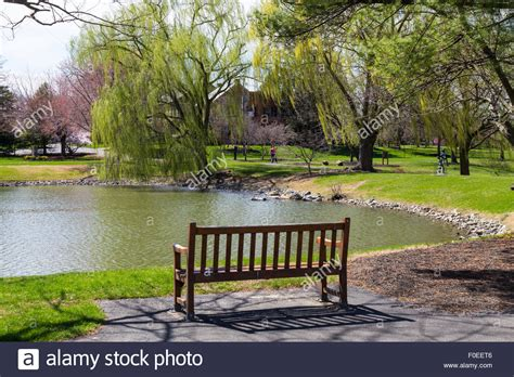 park bench scene a park bench in a serene scene at a suburban park known as