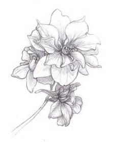 Hawthorn Flower - july birth month flower tattoo galleryhip com the