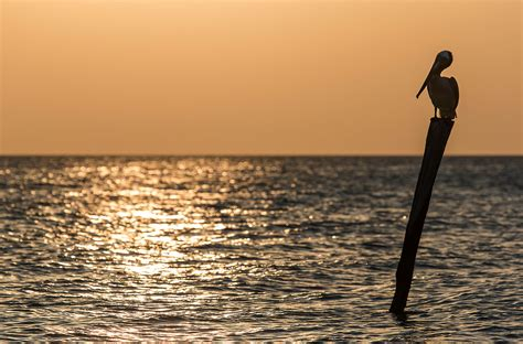 horn island boat explosion prime spot world photography image galleries by aike m