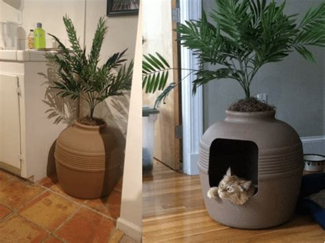 decorating  home  litter boxes offbeat home life