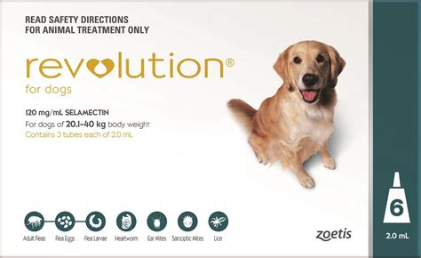 flea protection for dogs revolution flea for dogs 20 1 40kg teal ebay