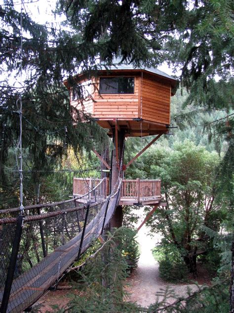 awesome tree houses amazing tree house wallpapers