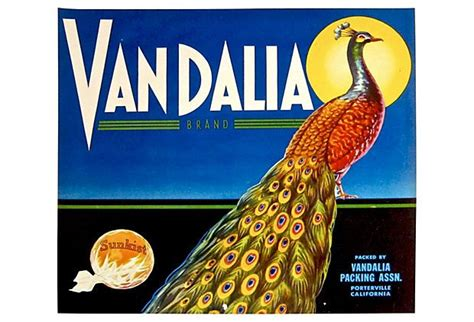 3 fruits sold in dozens large 1940s vandalia peacock fruit label peacocks
