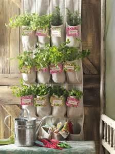 shoe organizer herb garden backyard projects birds and