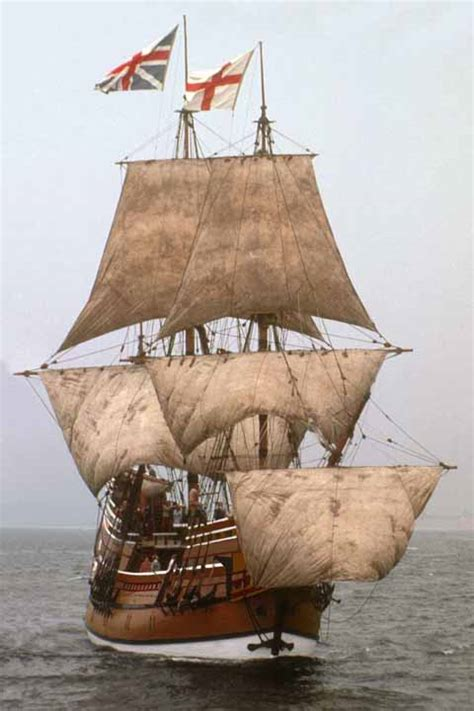 the mayflower the families the voyage and the founding of america books the mayflower is in our past my family of origin