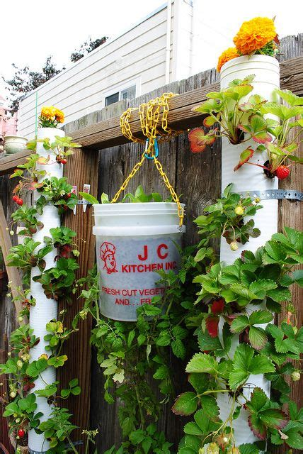 edible vertical garden using diy projects how does your