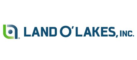 Land O Lakes Mba Internship by Food It Solution Harvest Mixing Bowl
