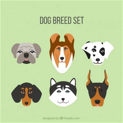 puppies by design dalmatian vectors photos and psd files free