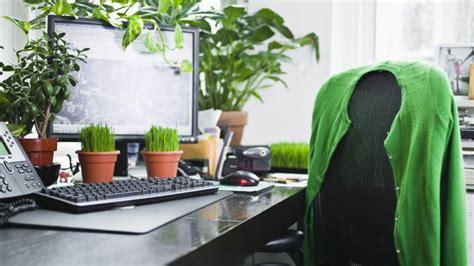 plant on desk 10 plantas perfectas para la oficina hogarmania