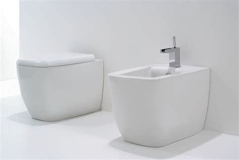 2 In 1 Toilet And Bidet by Lilac Toilets And Bidets