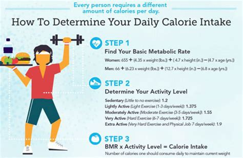 calorie calculator daily calorie calculator