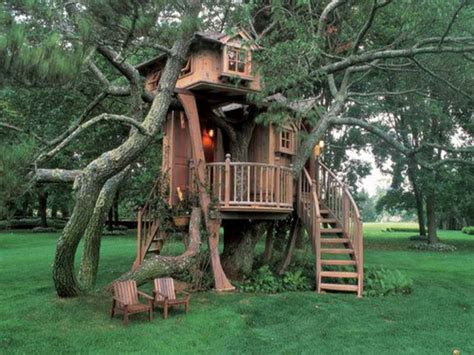 cool tree house ideas style cool tree houses design unique cool tree