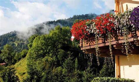 balconi invernali fioriti piante e fiori da balcone resistenti foto 3 40 tempo