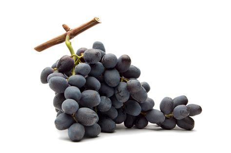 uva da tavola nera prodotti la assai