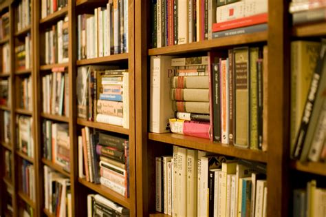 pictures of bookshelves file bookshelf jpg wikimedia commons