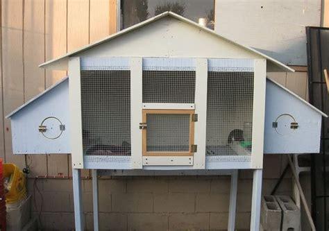 backyard quail coop 82 best images about button quail on pinterest best raising quail quails and rabbit